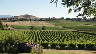Victoria's Beautiful Yarra Valley