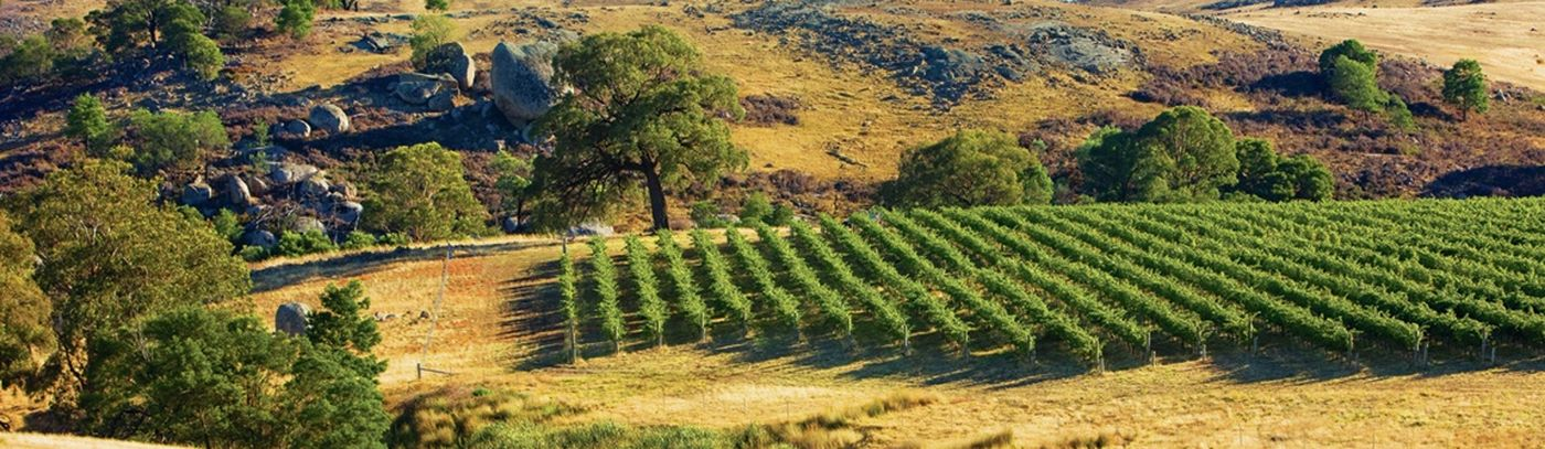 Fowles Wines - Vineyard & Granite