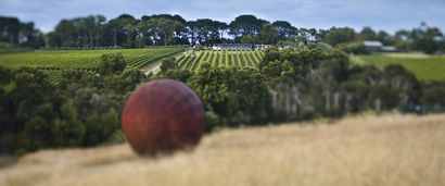 Montalto - Wine Meets Art