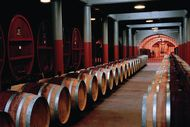 Penfolds Magill Estate Barrel Cellar - originally published on www.penfolds.com.au